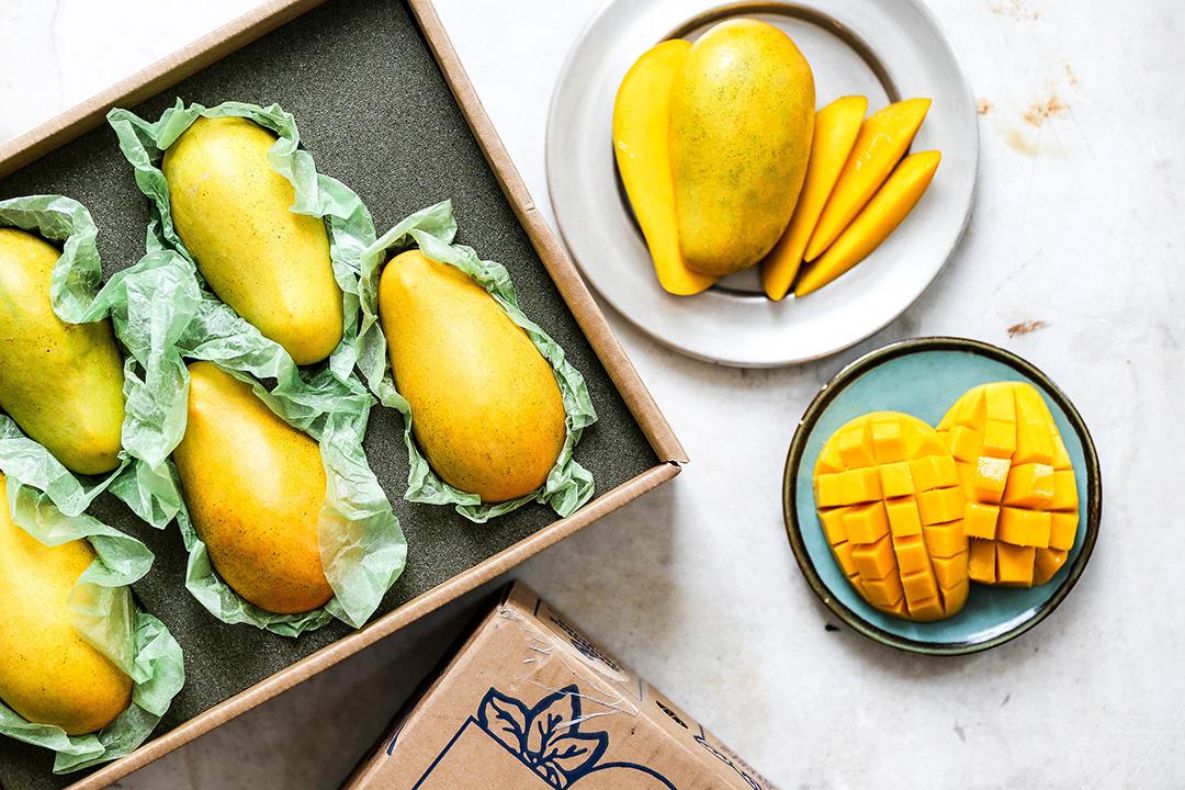 harry and david honey mangoes in decorative box